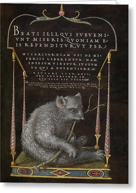 A Sloth Joris Hoefnagel, Flemish  Hungarian, 1542 - 1600 Greeting Card