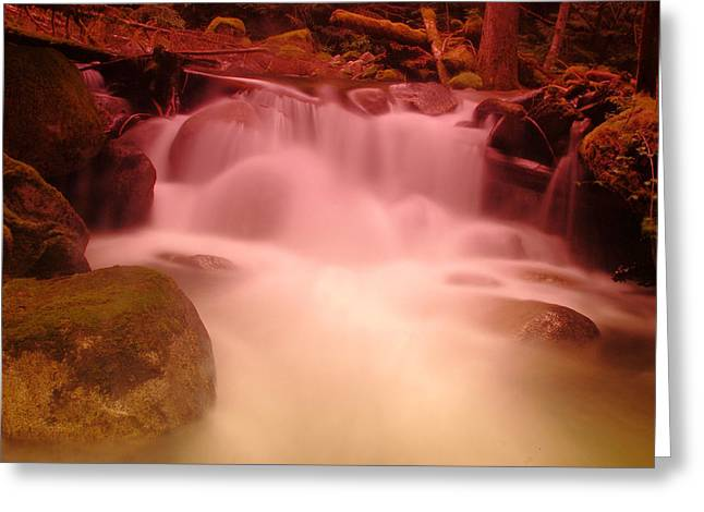 A Small Waterfall Along The Old North Cascade Highway  Greeting Card by Jeff Swan