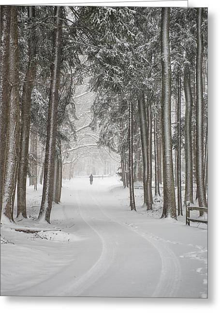 A Solitary Winter Wanderer Greeting Card by Dick Wood