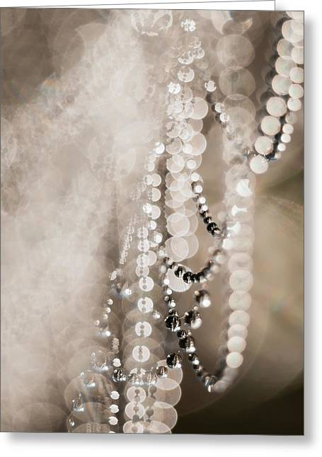A Spider S Web Hangs Heavily With Dew Greeting Card