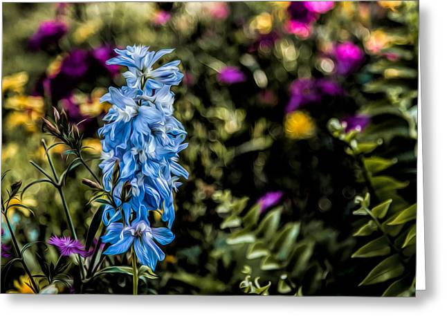 Greeting Card featuring the photograph A Splash Of Blue by Joshua Minso