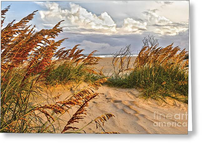 A Splendid Day At The Beach - Outer Banks Greeting Card