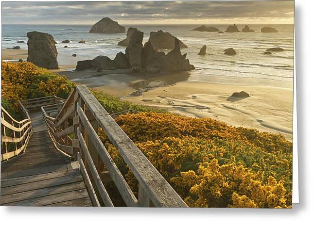 A Stairway Leads To The Beach Greeting Card by William Sutton