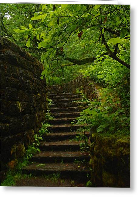 A Stairway To The Green Greeting Card