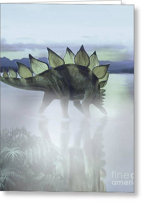 A Stegosaurus Dinosaur Grazing Greeting Card by Jan Sovak