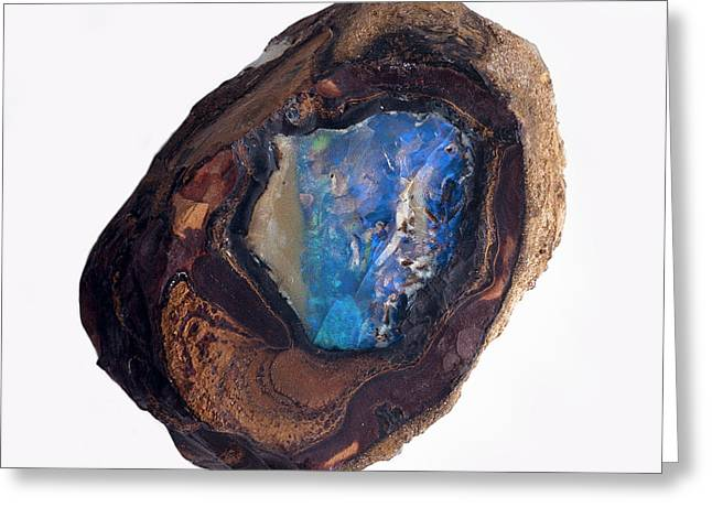A Stone With Blue Opal In The Centre Greeting Card by Dorling Kindersley/uig