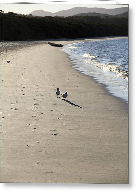 Greeting Card featuring the photograph A Stroll Along The Beach by Debbie Cundy