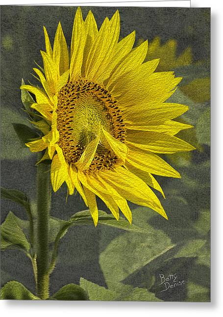 Greeting Card featuring the photograph A Sunflower's Prayer by Betty Denise