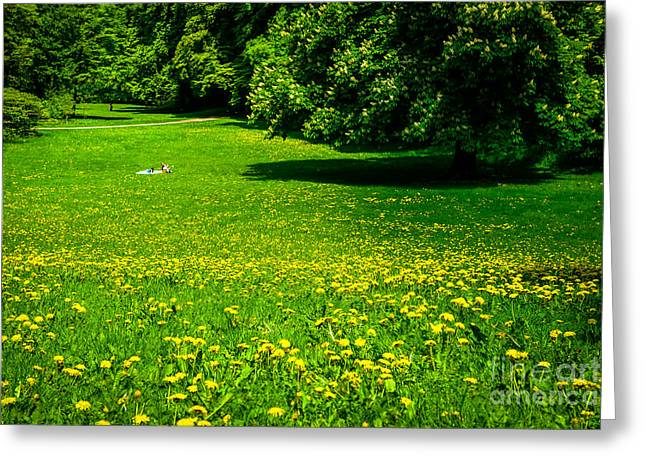 A Sunny Day In The Park Greeting Card