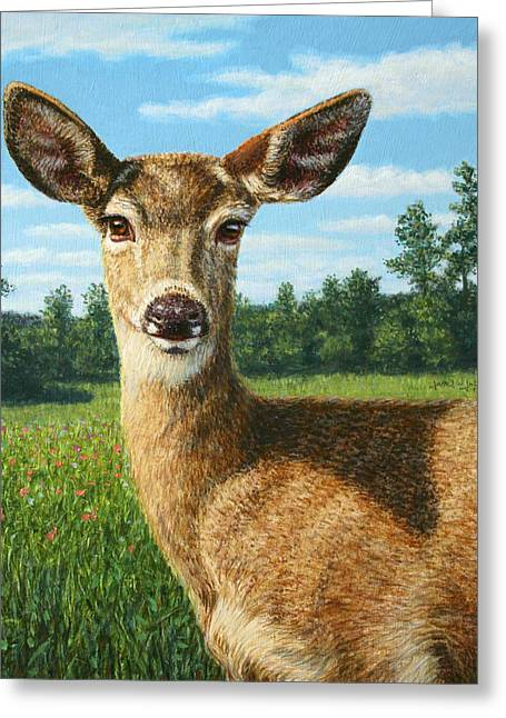 A Sunny Doe Greeting Card by James W Johnson