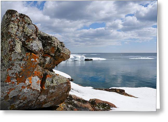A Superior Day Greeting Card by Sandra Updyke