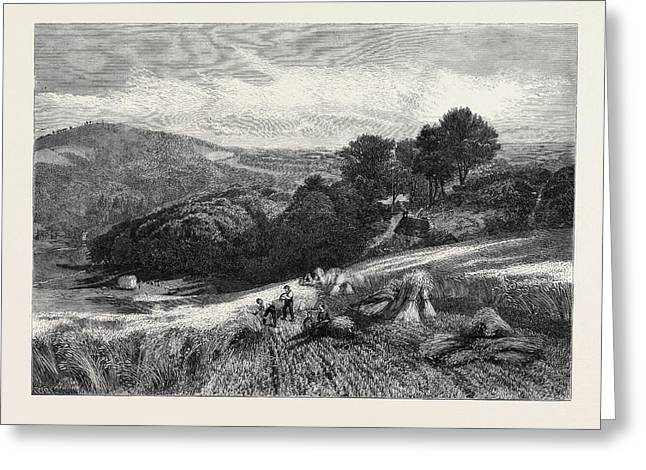 A Surrey Cornfield From The Exhibition Of The Society Greeting Card by English School