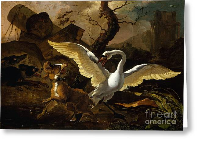A Swan Enraged By Hondius Greeting Card