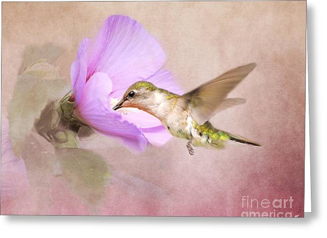 A Taste Of Nectar Greeting Card