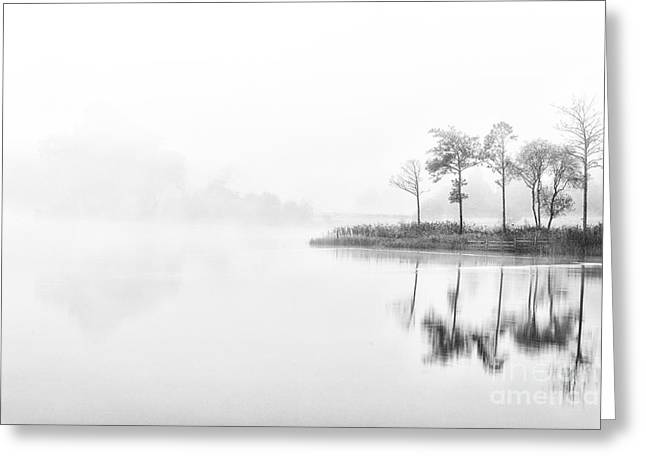 A Time For Reflection Greeting Card by Janet Burdon