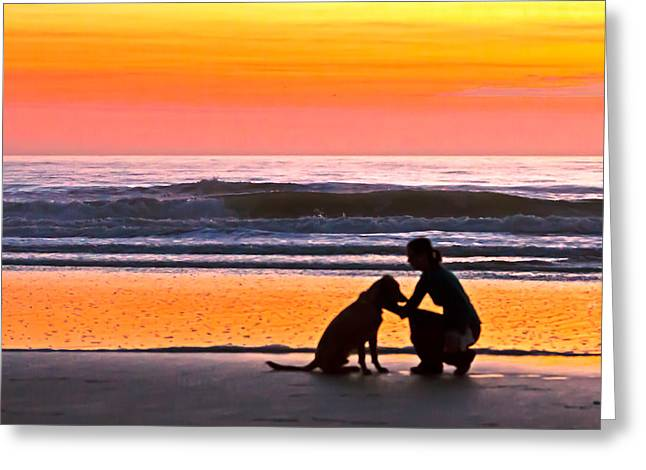 A Time To Bond Greeting Card by Jim Finch