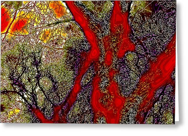A Touch Of Autumn Abstract II Greeting Card by David Patterson