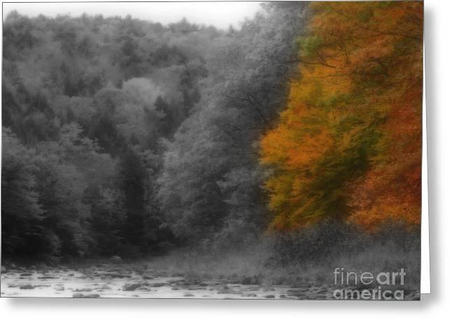 A Touch Of Autumn Colors Greeting Card