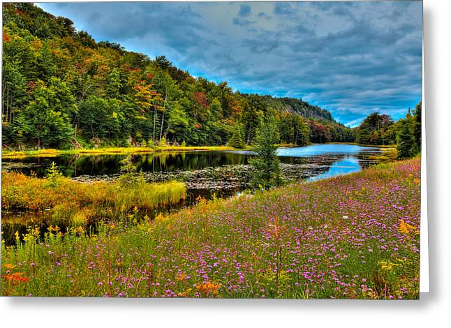 Summer Flowers On Bald Mountain Pond Greeting Card