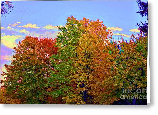 A Touch Of Neon Greeting Card by Judy Wolinsky