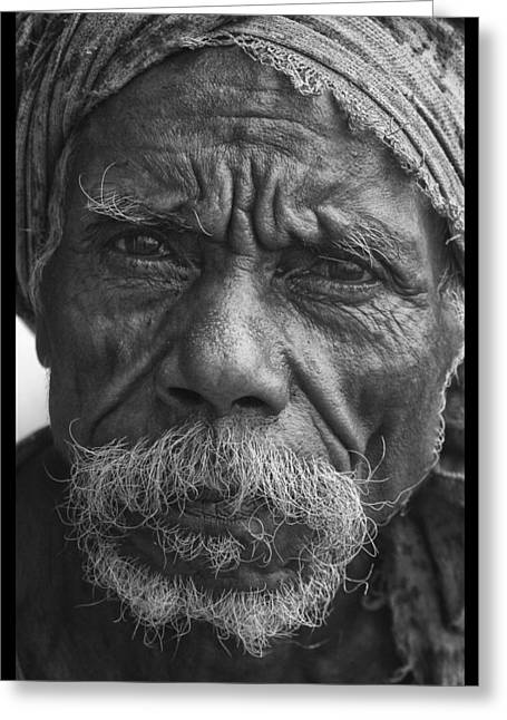A Touch Of Timor Greeting Card by David Longstreath