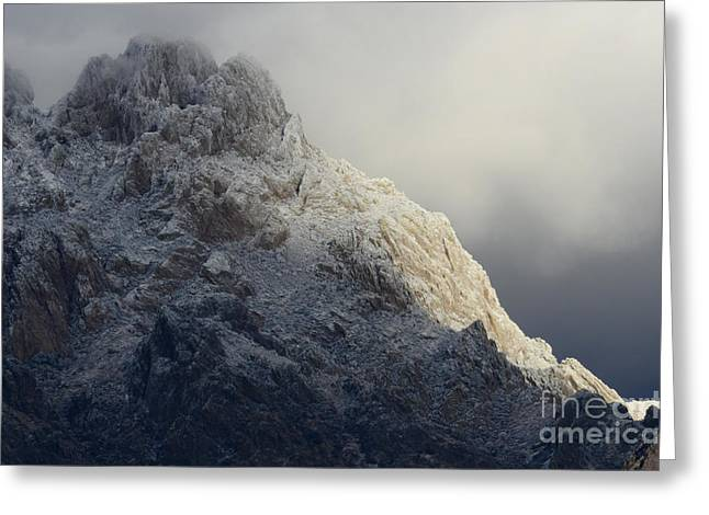 A Touch Of Winter In New Mexico Greeting Card by Bob Christopher