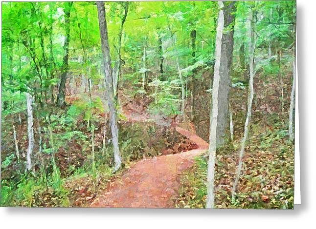 A Trail Through The Woods Greeting Card