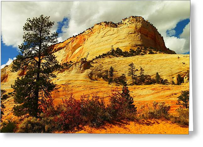 A Tree And Orange Hill Greeting Card by Jeff Swan