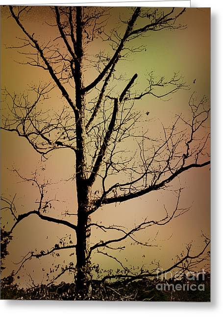 A Tree By The Lake Greeting Card