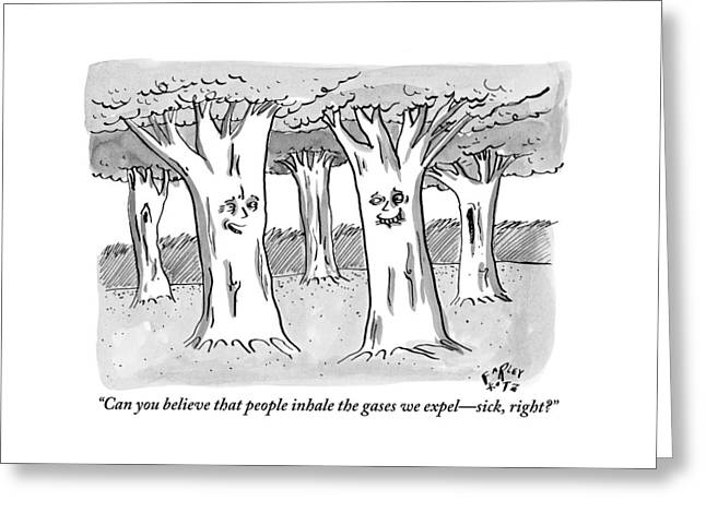 A Tree In A Forest Addresses Another Tree Greeting Card