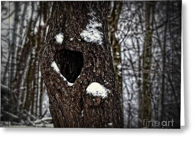 Greeting Card featuring the photograph A Tree With Heart by Brenda Bostic