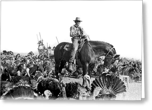 A Turkey Rancher Greeting Card by Underwood Archives