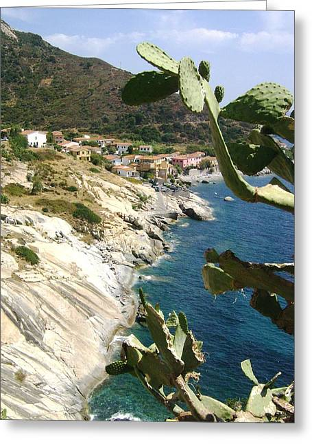 A Typical Bay Of Elba Island Greeting Card by Giuseppe Epifani