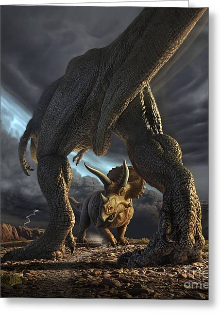 A Tyrannosaurus Rex And Triceratops Greeting Card