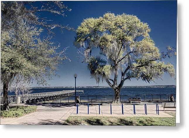 A View Of Lake Minneola Greeting Card by Lewis Mann