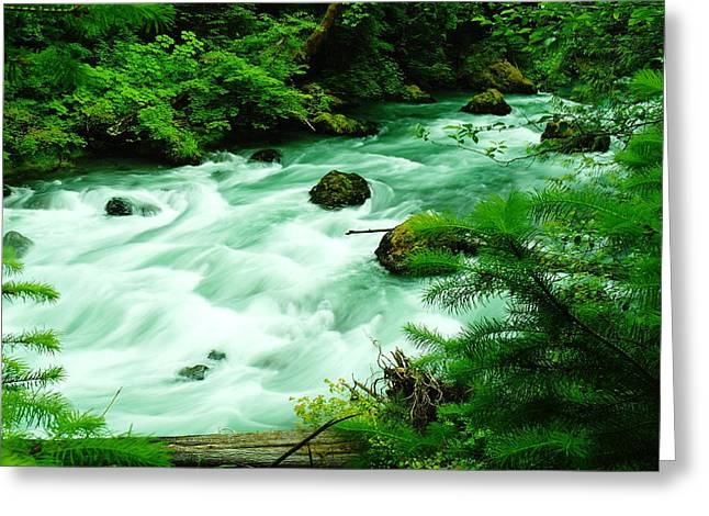 A View Of The Dosewallup River Greeting Card by Jeff Swan