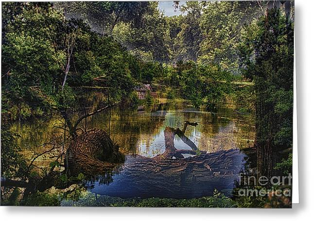 A View Of The Nature Center Merged Image Greeting Card by Thomas Woolworth