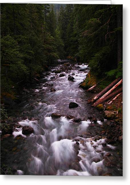 A View Of The River Greeting Card by Jeff Swan