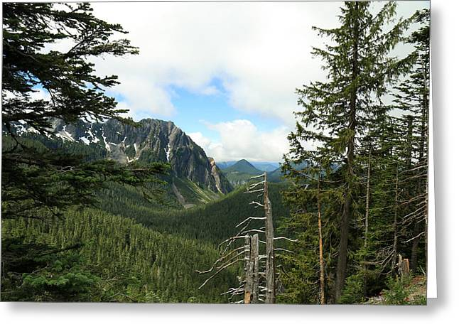 A Vista - Mt. Rainier National Park Greeting Card