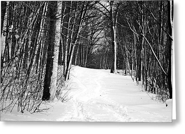 A Walk In Snow Greeting Card by Joe Faherty