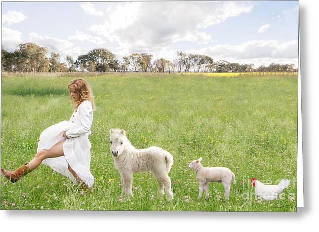A Walk In The Country Greeting Card by Linda Lees