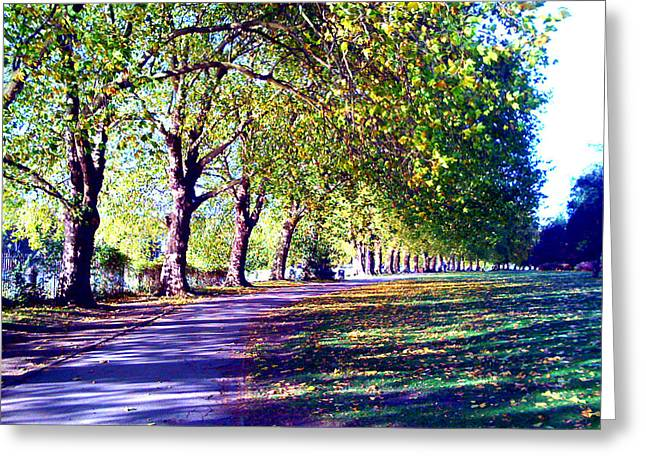 A Walk In The Park Greeting Card by A Dx
