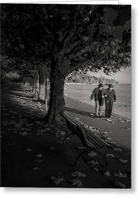 Greeting Card featuring the photograph A Walk In The Park by Antonio Jorge Nunes