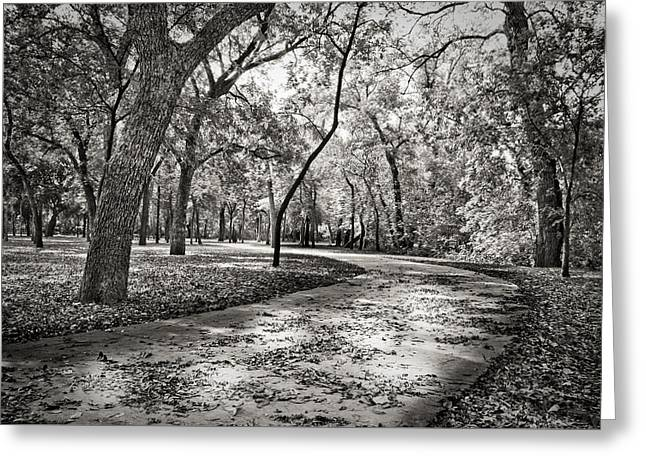 A Walk In The Park Greeting Card