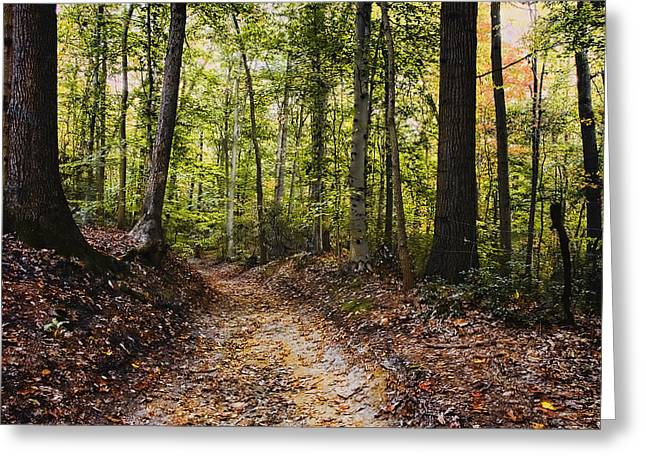 A Walk In The Park Greeting Card by Robert Culver