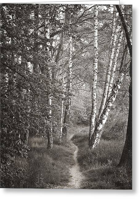 A Walk In The Woods Greeting Card by Wendell Thompson