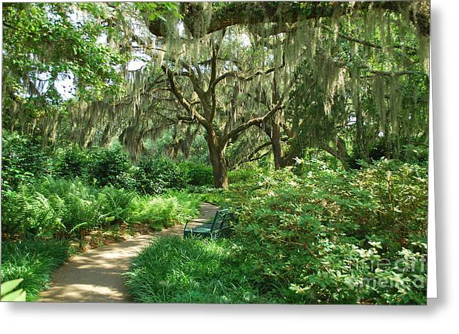 Greeting Card featuring the photograph A Walk Through The Garden by Bob Sample