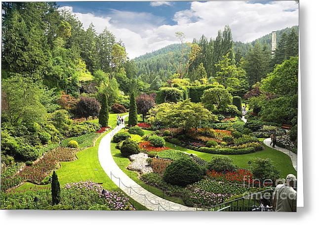 A Walk Through The Paradise Gardens Greeting Card
