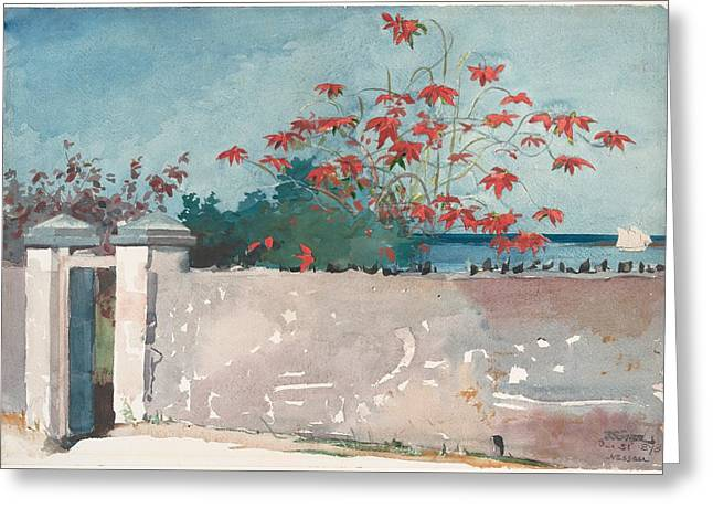 A Wall Nassau Greeting Card