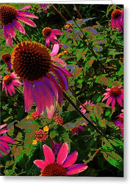Greeting Card featuring the photograph A Warm Spring by Diane Miller